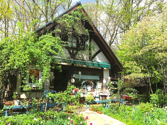 清里のおすすめ観光スポット、フォトジェニックな「萌木の村」現地ルポ