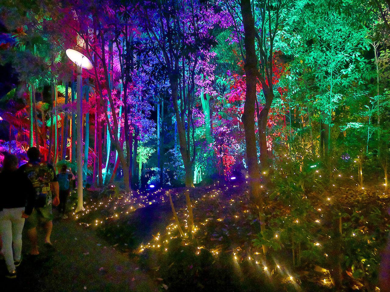 The Enchanted Garden4