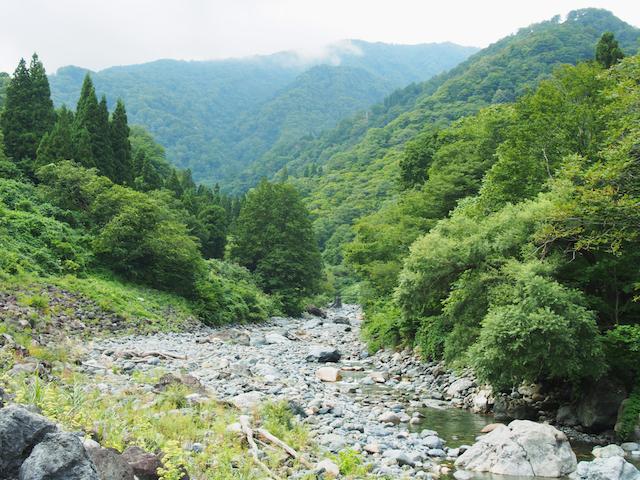新潟県小滝川ヒスイ峡