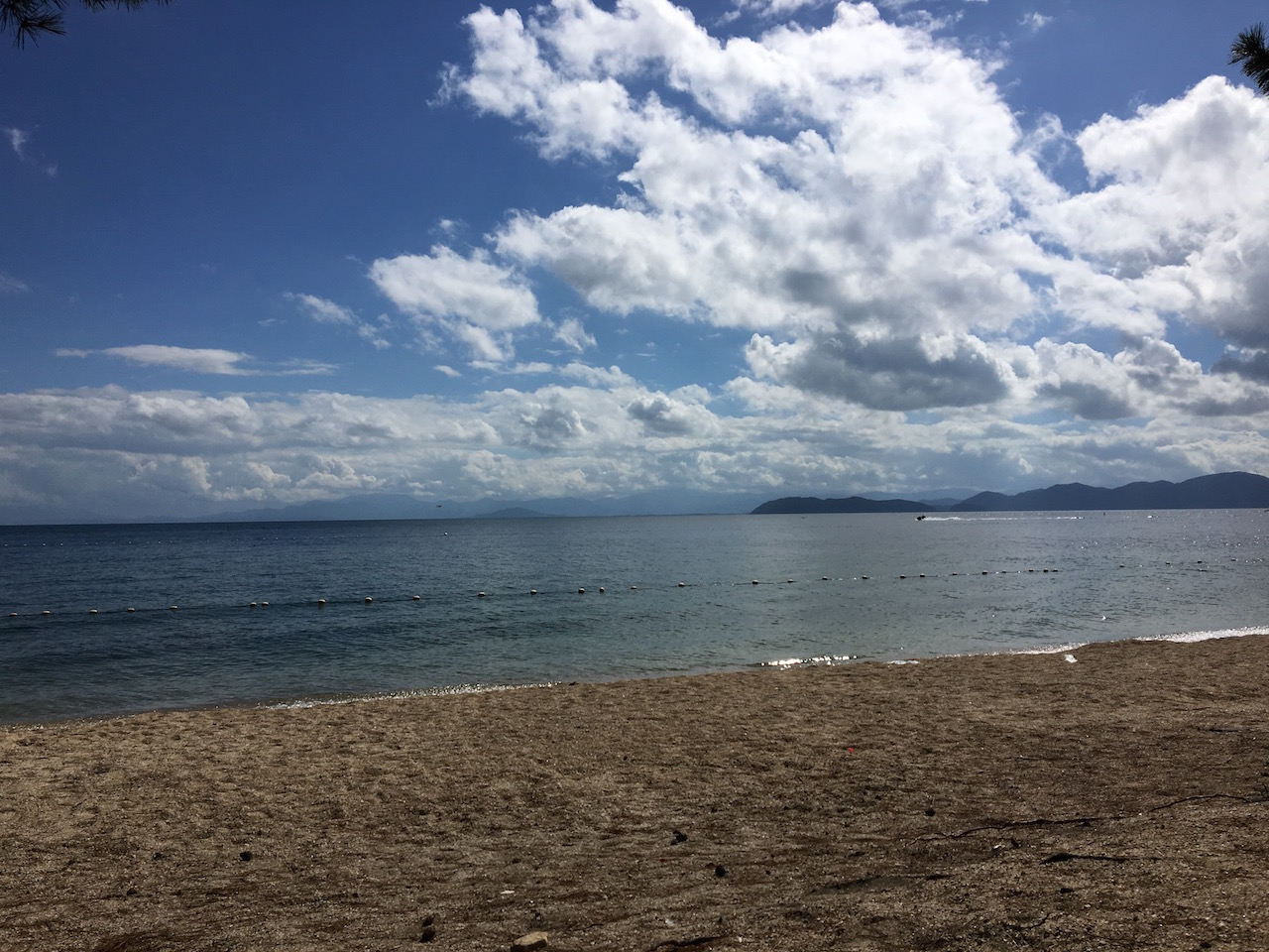 夏 琵琶湖